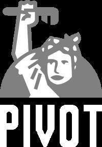 Main logo gray